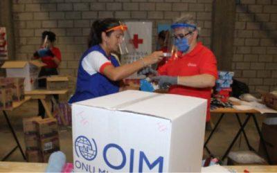 Impacto de la pandemia sobre la población migrante argentina